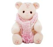 Плюшевый медвежонок зимы нося шарф Стоковая Фотография