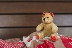 Плюшевый медвежонок игрушки Стоковая Фотография RF
