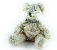 Плюшевый медвежонок, изолированный, белый Стоковое Изображение RF