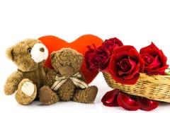 Плюшевый медвежонок и красные розы на белой предпосылке backgr валентинки Стоковые Изображения