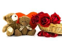 Плюшевый медвежонок и красные розы на белой предпосылке backgr валентинки Стоковые Изображения RF