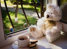 Плюшевый медвежонок и чашка чая Стоковые Фотографии RF