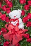Плюшевый медвежонок между расположением роз стоковое фото