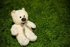 Плюшевый медвежонок на ковре стоковая фотография rf