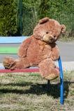Плюшевый медвежонок на крупном плане стенда Стоковое Фото