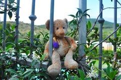 Плюшевый медвежонок на праздниках Стоковая Фотография