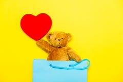 Плюшевый медвежонок с игрушкой в сумке Стоковые Изображения RF