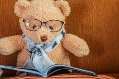 Плюшевый медвежонок читает Стоковое Изображение