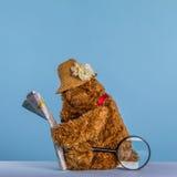 Плюшевый медвежонок читая карту Стоковое Изображение