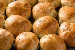 Плюшки домодельного хлеба с маковыми семененами Стоковое Изображение