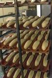 Плюшки перед печь в печи Стоковое Изображение