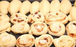 Плюшки с изюминкой и циннамоном перед печь Стоковое Фото