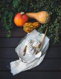 Плюшки тыквы циннамона с сметанообразной замороженностью сыра и зрелыми тыквами Стоковая Фотография