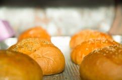 Плюшки хлеба крупного плана свежие испеченные с семенами сезама покрывают, сидящ на серой варя поверхности Стоковая Фотография RF