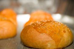 Плюшки хлеба крупного плана свежие испеченные с семенами сезама покрывают, сидящ на серой варя поверхности Стоковое Изображение RF