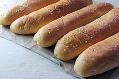 Плюшки для хот-дога Стоковая Фотография RF