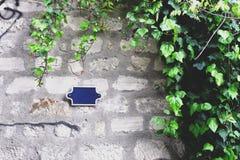 Плющ на серой кирпичной стене Стоковое Изображение RF