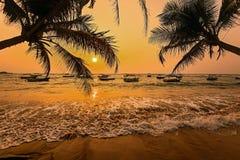 Пляжи в Шри-Ланке стоковые фотографии rf