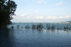Пляжный бассейн Стоковая Фотография RF
