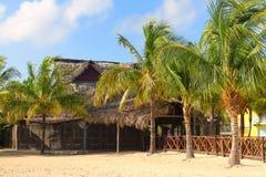 Пляжный ресторан в кокосах Cayo Стоковое фото RF
