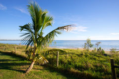 Пляж Австралия залива Hervery стоковая фотография rf