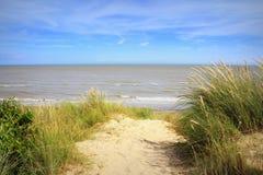 Пляж Англия Великобритания Lydd-на-моря Стоковая Фотография