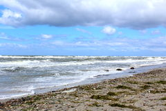 Пляж Балтийского моря в штормовой погоде с волнами моря Стоковые Фотографии RF