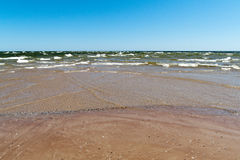 Пляж Балтийского моря с утесами и старой древесиной Стоковое Фото