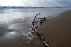 пляж бурный стоковое изображение rf