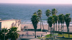 Пляж Венеции сток-видео