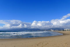 Пляж Венеции Стоковые Изображения RF