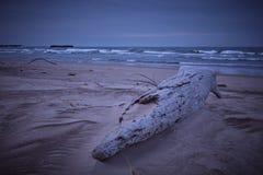 Пляж Великих озер в зиме Стоковое Изображение RF