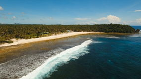 Пляж вида с воздуха красивый на тропическом острове Филиппины, Siargao сток-видео