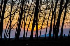 Пляж восхода солнца Стоковое фото RF