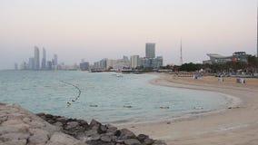 Пляж в Абу-Даби, ОАЭ сток-видео