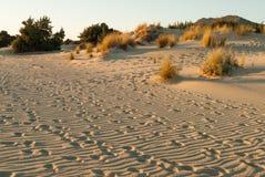 Пляж в Греции Стоковые Фото