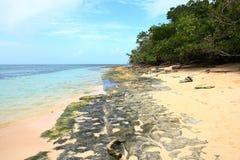 Зеленый пляж острова Стоковое Изображение RF