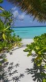 Пляж в Мальдивах Стоковое Изображение RF