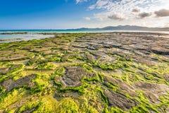 Пляж в Окинаве стоковое фото rf