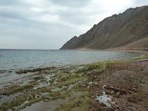 Пляж в реальном маштабе времени Стоковое Изображение RF