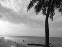 Пляж в черно-белой предпосылке Стоковая Фотография