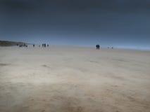 Пляж в шторме Стоковые Фотографии RF
