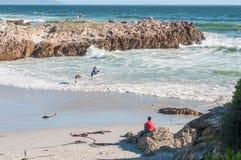 Пляж в Hermanus Стоковые Изображения RF