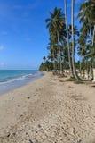 Пляж в Maragogi, Alagoas - Бразилии Стоковое Изображение RF