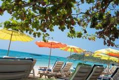 Пляж гамака Стоковая Фотография