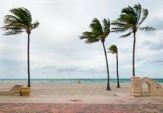 Пляж Голливуда, Флорида Стоковая Фотография RF
