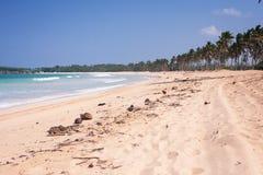 пляж естественный Стоковые Изображения