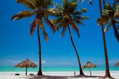 Пляж Занзибара Paje стоковое изображение
