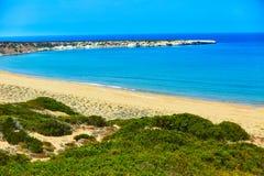 Пляж залива Lara, Кипр Стоковое фото RF