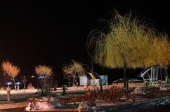 Пляж зимы ночи Стоковая Фотография